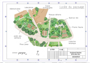 btsa-amenagements-paysagers-jardignac-plan