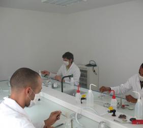 Labo in vitro, étudiants en pratique
