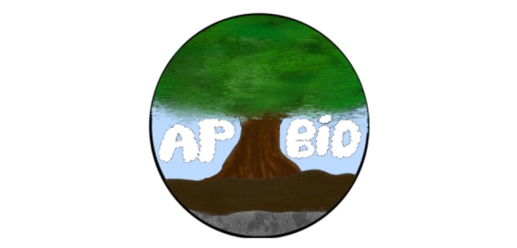 AP BIO